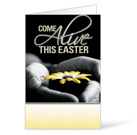 Come Alive Easter Bulletin