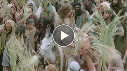The Bible Trailer