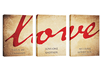 """Love"" Canvas Triptych"