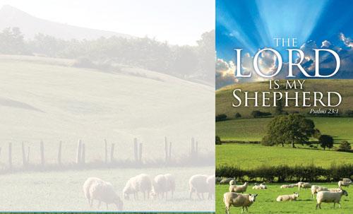 Lord My Shepherd 8 5 x 14