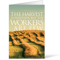 Reflections Harvest Bulletin
