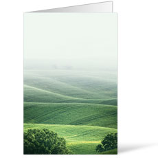 Scenic Hills Bulletin