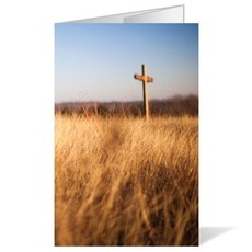Cross and Wheat Field