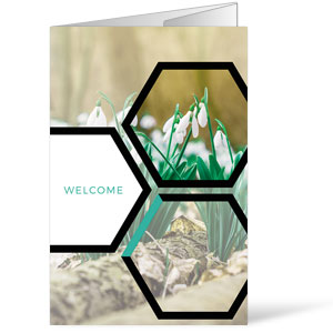 Welcome Hexagon Spring Bulletins