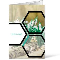 Welcome Hexagon Spring Bulletin