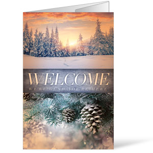 Beautiful Creation Winter Bulletins