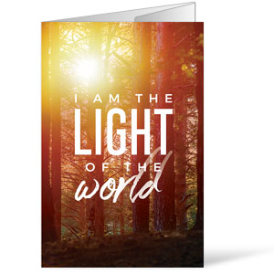 Light of the World Forest Bulletins