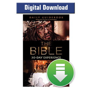 Bible 30-Day Experience Guidebook ebook ebooks