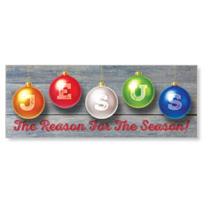 Jesus Reason Ornaments Banner
