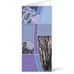 Winter Trees Bulletin