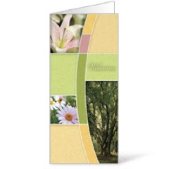 Spring Trees 11 x 17 Bulletins