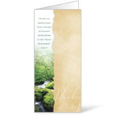 Torn Paper Summer Bulletins