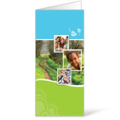 Spring Path Bulletins