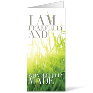 Wonderfully Made Bulletins