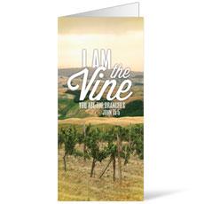 Reflections Vine Bulletin