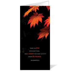 Illuminated Fall Bulletin