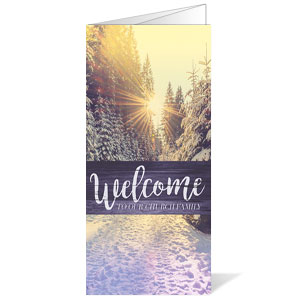Scenic Light Winter Bulletins