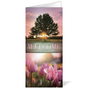 Beautiful Creation Spring Bulletins