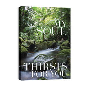My Soul Thirsts Wall Art