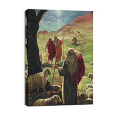 BP Shepherds Canvas Print