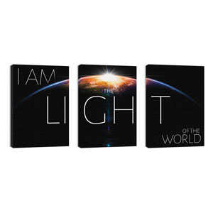 I Am The Light 24in x 36in Canvas Prints