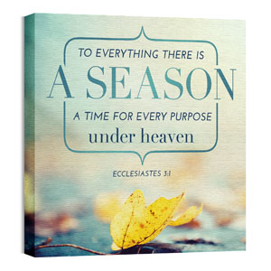 Season Ecc 3:1 24 x 24 Canvas Prints
