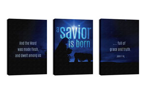 Blue Savior Born 24in x 36in Canvas Prints