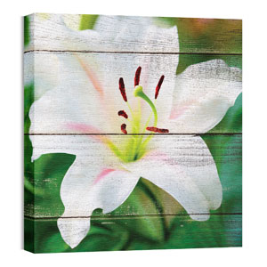 Mod Lily 24 x 24 Canvas Prints