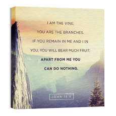 John 15:5 Mountain Crag Wall Art