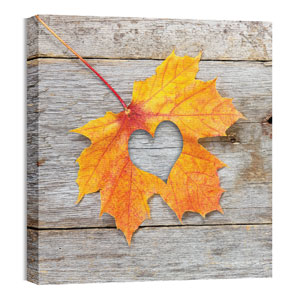 Mod Heart Leaf 24 x 24 Canvas Prints