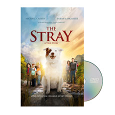 The Stray Movie License Package