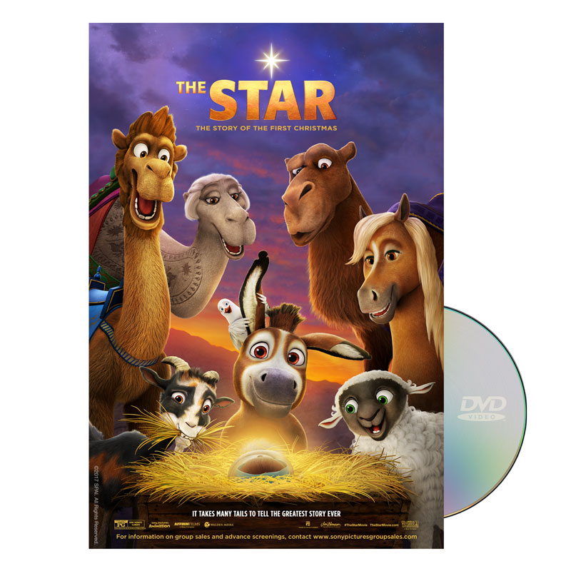 Movie License Packages, Christmas, The Star Movie, 100 - 1,000 people  (Standard)