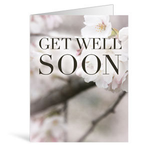 Nature Get Well Greeting Cards