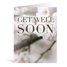 Nature Get Well Greeting Card