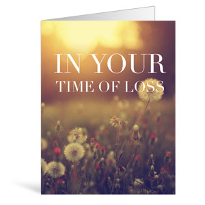 Nature Loss Greeting Cards