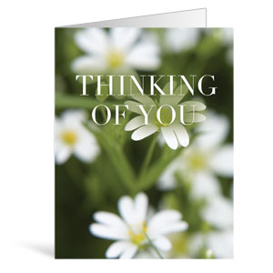Nature Thinking Greeting Cards