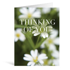 Nature Thinking Greeting Card