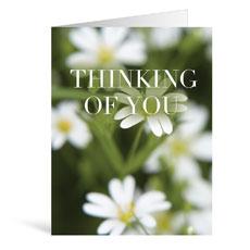 Nature Thinking Greeting Card