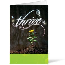 Thrive Bulletin