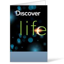 Discover Life Bulletin