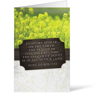 Fresh Air Wild Flowers Bulletins
