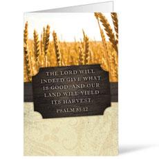Fresh Air Wheat Bulletin