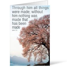 Reflections Through Him Bulletin