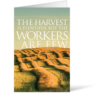 Reflections Harvest 8.5 x 11 Bulletins 8.5 x 11
