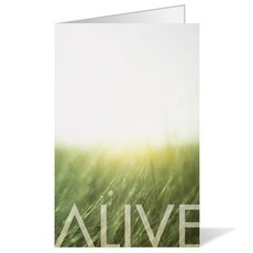 Alive Easter Bulletin
