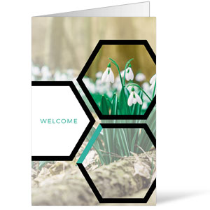 Welcome Hexagon Spring Bulletins 8.5 x 11