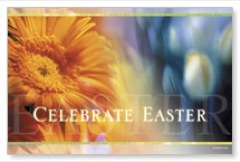 Easter Flower Postcard
