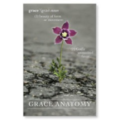 Grace Anatomy Postcard