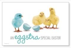 Eggstra Special Postcard