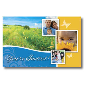 Summer Path Postcards